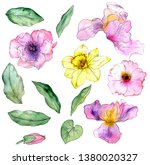watercolor drawing flowers and... | Shutterstock . vector #1380020327