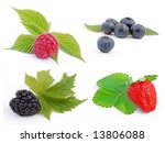 berries collection isolated on... | Shutterstock . vector #13806088