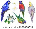 Set Of Tropical Birds. Parrots...