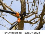 Fruit Tree Cut Trim Prune With...