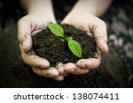 hands holding young plant.... | Shutterstock . vector #138074411