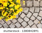 yellow pansy in flower pot on...   Shutterstock . vector #1380842891