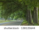 The Canopy Covered Street In...