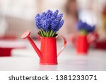 Beautiful Bunch Of Muscari Or...
