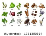 herbs. spices. italian herb... | Shutterstock .eps vector #1381350914