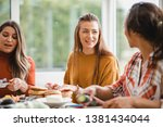 young female adult talking to... | Shutterstock . vector #1381434044