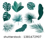 tropical palm leaves  jungle... | Shutterstock .eps vector #1381672907