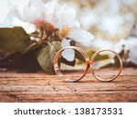 two wedding rings and spring... | Shutterstock . vector #138173531