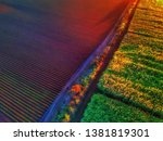 Bundaberg crop tapestry at sunrise