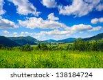 Alpine Meadow With Tall Grass...