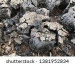 dry sediment of biogas... | Shutterstock . vector #1381952834