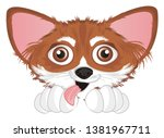 crazy snout of chihuahua with...   Shutterstock . vector #1381967711