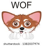 snout of chihuahua and word woof   Shutterstock . vector #1382037974