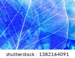 blue leaves in the detail | Shutterstock . vector #1382164091