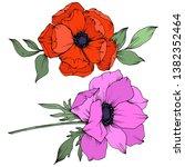 vector anemone floral botanical ...   Shutterstock .eps vector #1382352464