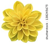 yellow isolated flower | Shutterstock . vector #138245675
