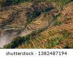 samaba rice terrace fields in... | Shutterstock . vector #1382487194