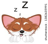 sleeping snout of chihuahua...   Shutterstock . vector #1382635991