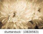 white flowers as a retro... | Shutterstock . vector #138285821