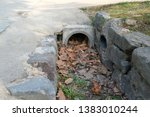 Dried Leaves Blocked Water From ...