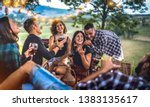 young friends having fun at... | Shutterstock . vector #1383135617