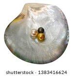 June Birthstone Tahitian Shell...