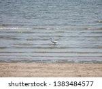 Scenery Of Pranburi Beach ...
