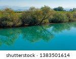 old broken tree branches fell... | Shutterstock . vector #1383501614