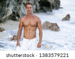 portrait of tanned fit male... | Shutterstock . vector #1383579221