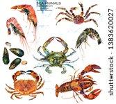 sea crustacean animals. marine... | Shutterstock . vector #1383620027
