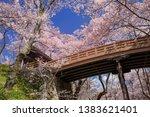 sakurakumokyo takato castle... | Shutterstock . vector #1383621401