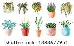watercolor houseplants. hand... | Shutterstock . vector #1383677951