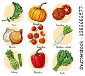 set of drawn colored vegetables.... | Shutterstock .eps vector #1383682577
