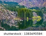 cherry blossoms blooming on the ... | Shutterstock . vector #1383690584