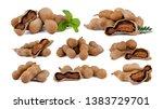 set of fresh tamarind isolated... | Shutterstock . vector #1383729701