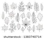 hand drawn autumn leaves... | Shutterstock .eps vector #1383740714