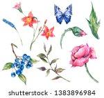vintage watercolor set of wild... | Shutterstock . vector #1383896984