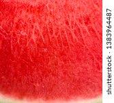 Watermelon Background. Summer...
