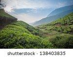 tea plantations in munnar ... | Shutterstock . vector #138403835