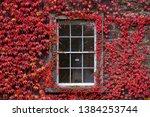 Trinity College Window In...