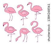 pink flamingo vector cartoon... | Shutterstock .eps vector #1384268561