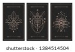 vector set of three dark... | Shutterstock .eps vector #1384514504