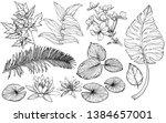 vector set branches  flowers... | Shutterstock .eps vector #1384657001