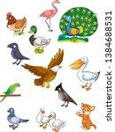 bird colourful image for books | Shutterstock . vector #1384688531
