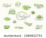 bio  eco  vegan  nature  green... | Shutterstock .eps vector #1384822751