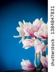 spring beautiful blooming... | Shutterstock . vector #1384847831
