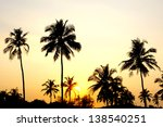 palms and sun  tropical sunset... | Shutterstock . vector #138540251