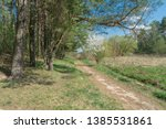 walkway lane path with green... | Shutterstock . vector #1385531861