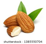 group of almonds with leaves... | Shutterstock . vector #1385550704