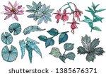 vector set flowers and leaves ... | Shutterstock .eps vector #1385676371